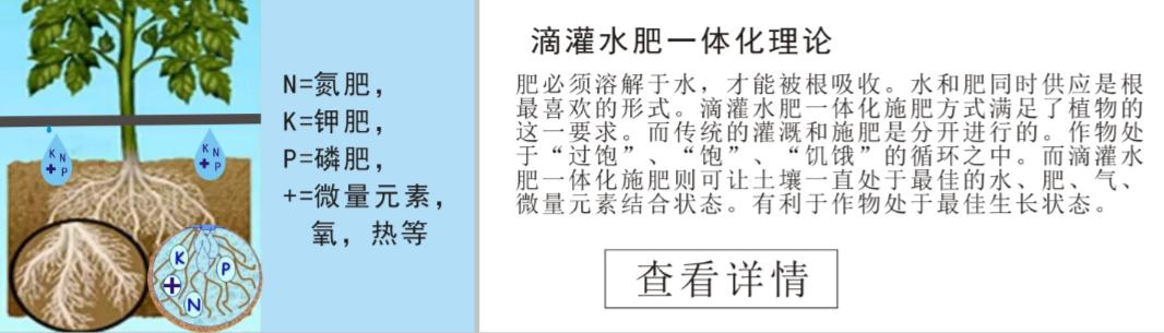 广西智能灌溉设备 大棚补偿式滴灌管 海南顺禾节水科技有限公司