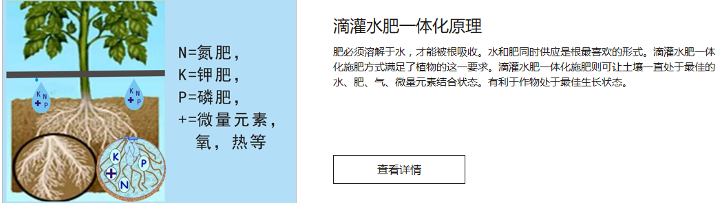 芒果水肥一体化 PH值传感器厂家 海南顺禾节水科技有限公司