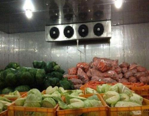 昆明蔬菜冷库报价 昆明制冷设置装备摆设报价 云南益邦制冷设置装备摆设无限公司
