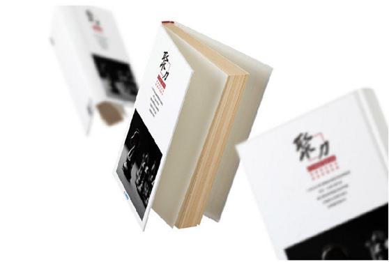 云南宣传册设计多少钱 云南哪家包装设计公司比较好 昆明象素文化传播有限公司