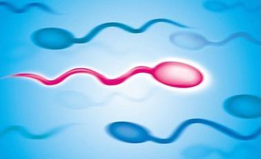 预防精子精液异常的方法_得了附睾丸囊肿怎么办_成都武侯名仕门诊部有限公司