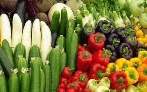 农产品价格 无公害蔬菜专卖店 云南盛衍种业有限公司