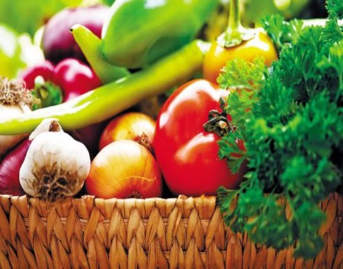 蔬菜莳植技能 天下坚果零售 云南盛衍种业无限公司