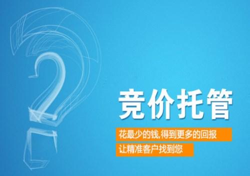 竞价托管网络推广/ 竞价托管公司/西安艾迪尔网络科技有限公司