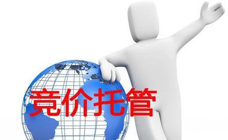 竞价托管 专业保健品开户条件 西安艾迪尔网络科技无限公司