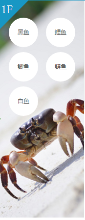知名水产商城招商加盟_优质全人工孵化价格_资阳市惠丰水产专业合作社