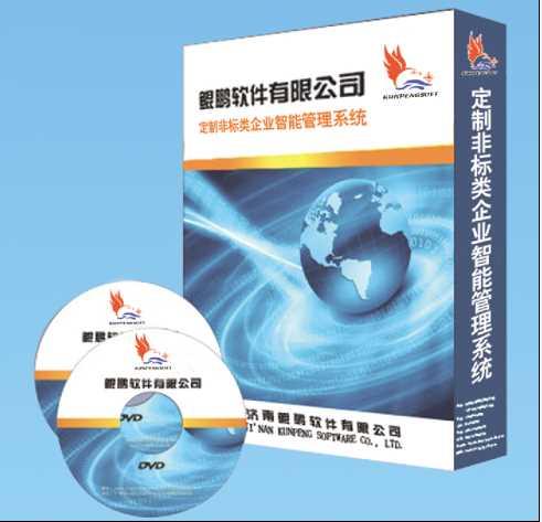 ERP办理软件_管家婆售后_济南鲲鹏软件无限公司