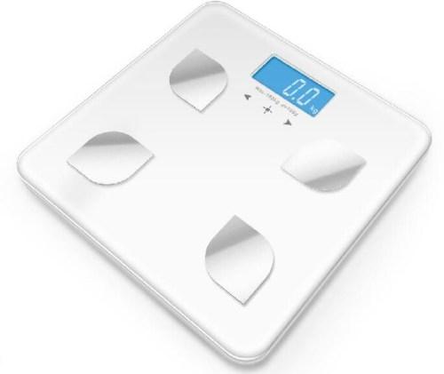 优质脂肪秤/优秀厨房秤哪个厂家好/中山市科创电子制造有限公司