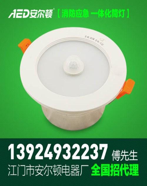 消防应急照明厂家 LED应急电源厂家 江门市蓬江区安尔顿电器厂