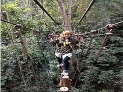 河北丛林探险/丛林探险安装/郑州弘创游乐设备有限公司