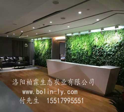 植物墙厂家-高层垂直绿化设计-洛阳柏霖生态农业有限公司