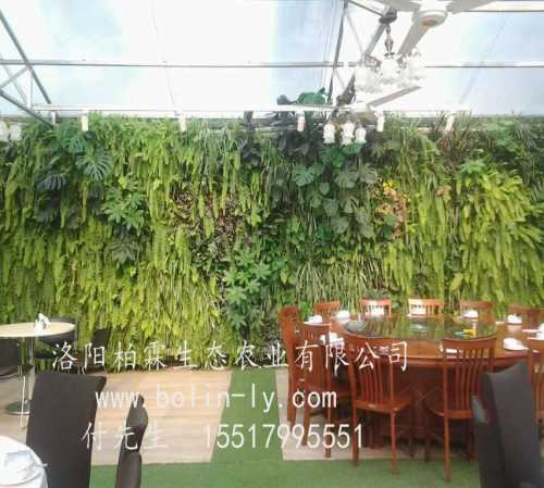 会议室立体绿化装置-仿真植物墙厂家-洛阳柏霖生态农业有限公司