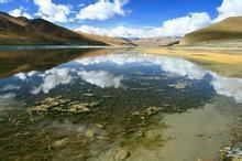 羊卓雍措路线 西藏虫草多少钱 西藏大雨酒业有限公司