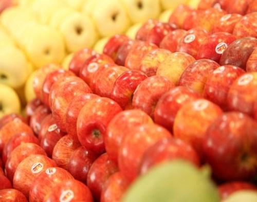 加盟水果店哪家好 加盟高端水果店