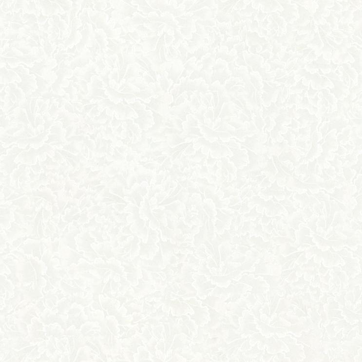 佛山全抛釉零售 家装内墙砖贩卖 佛山市汇强陶瓷无限公司