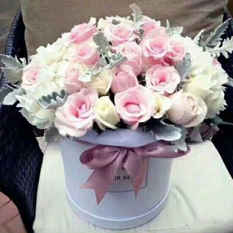 特价鲜花 玫瑰鲜切花 昆明四序长青花草无限公司