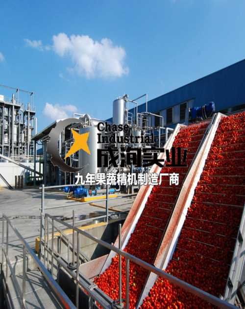 番茄酱生产线交钥匙工程-破碎机卖价-上海成洵实业有限公司