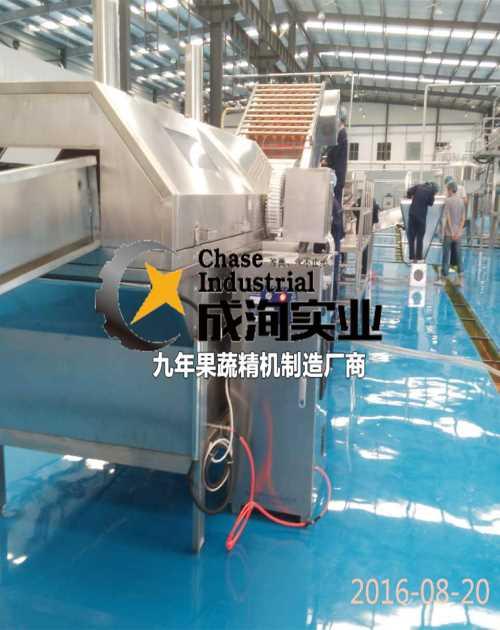 工业NFC生产线交钥匙工程_打浆去核机_上海成洵实业有限公司