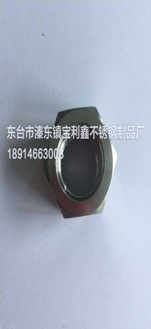 F55双相钢螺母价格/双相钢螺母价格/S32760双相钢螺母供应商