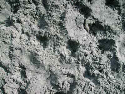 平凡硅酸盐水泥几多钱一吨_南充砂石厂家直销_南充添浩建材无限公司