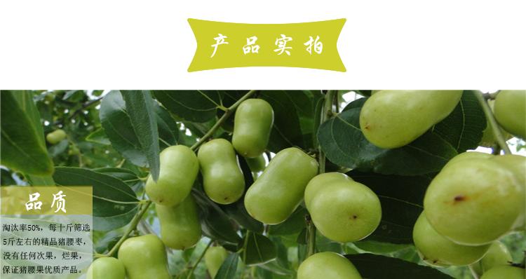 羊角镇仙女山/重庆枣子销售/重庆市武隆区枣典水果种植股份合作社