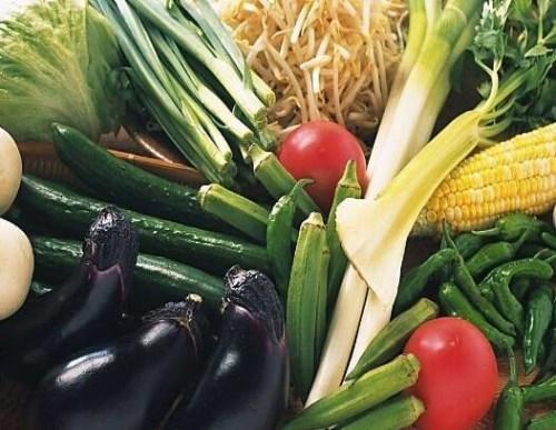 重庆蔬菜批发图片/重庆奉节白帝城门票是多少/奉节县耕植农业发展有限公司