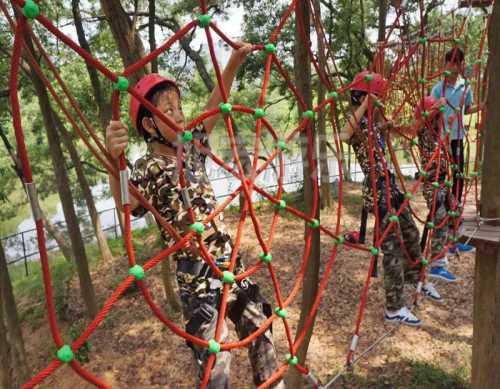 树上丛林穿越 四川滑索价格 新乡市旭宏游乐设施有限公司