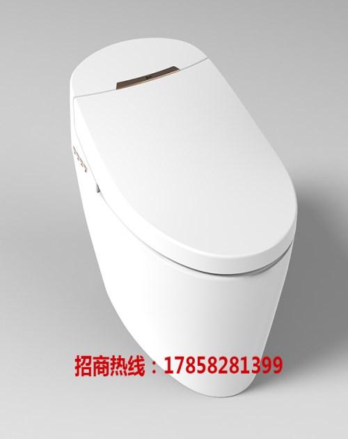 智能马桶一体机图片 智能马桶盖需要用纸吗 浙江洁妮斯电子科技有限公司