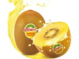 黄心猕猴桃和绿心猕猴桃的区别 巨峰葡萄批发 成都宇昊电子商务有限公司