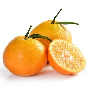 微商春见柑橘产地直供_新疆哈密瓜批发_成都宇昊电子商务有限公司