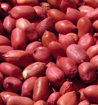红皮花生散装售卖_黑香米价格_双流区栖博食品商贸部
