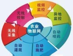 自动化物联网系统_德速科技自动照看物联网系统_深圳市德速科技有限公司