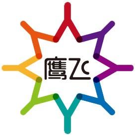 重庆鹰飞航空体育俱乐部有限公司
