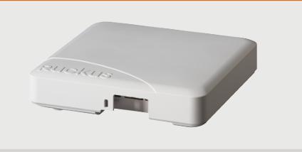 锐捷无线设备-美国Ruckus控制器授权-深圳市远飞网络科技有限公司