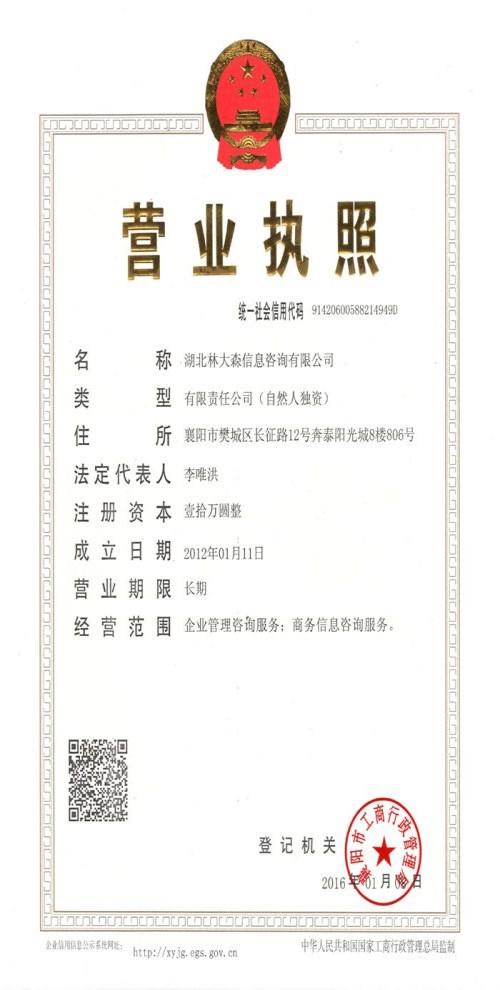 湖北林大森信息咨询有限公司