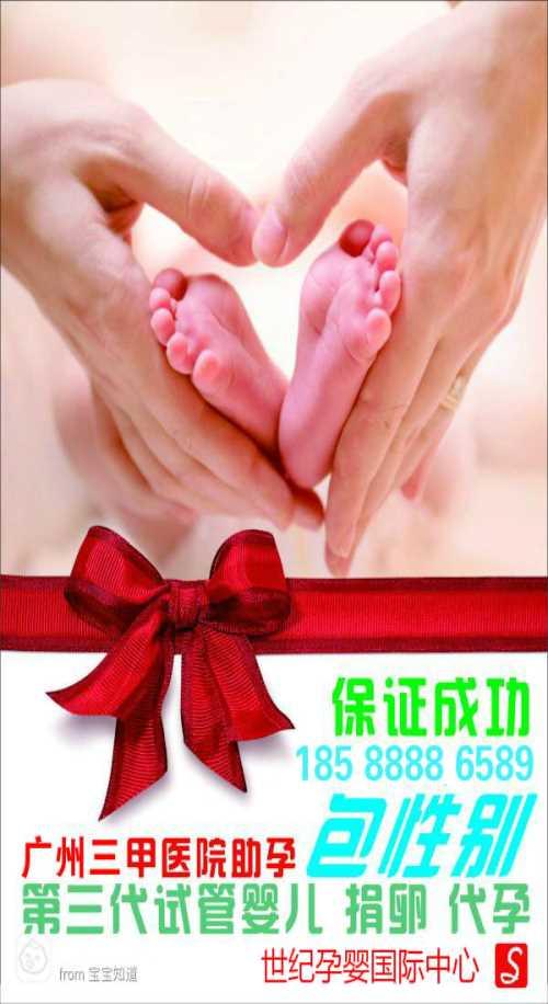 试管婴儿成功率取决于什么-世纪孕婴国际助孕包性别-世纪孕婴国际中心