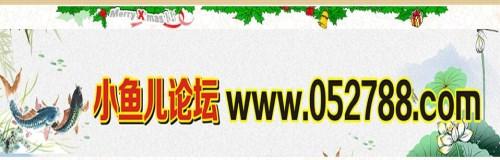 红姐论坛网站/神算网/广东一家商务咨询有限公司