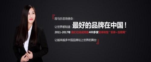 苏州BSMS系统-佛山营销管理咨询-段马乐(上海)实业有限公司