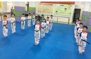 武昌品牌儿童跆拳道培训中心_叁叁企业网
