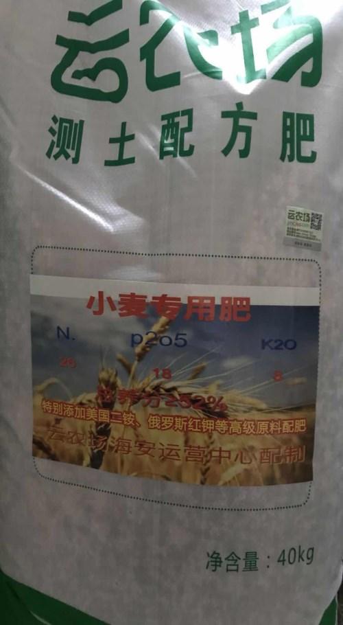 优质小麦专用肥哪家便宜_环球在线
