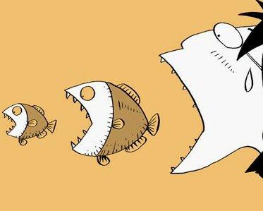 大鱼吃小鱼——商务快车
